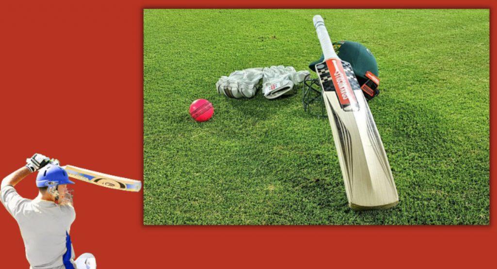 Play cricket